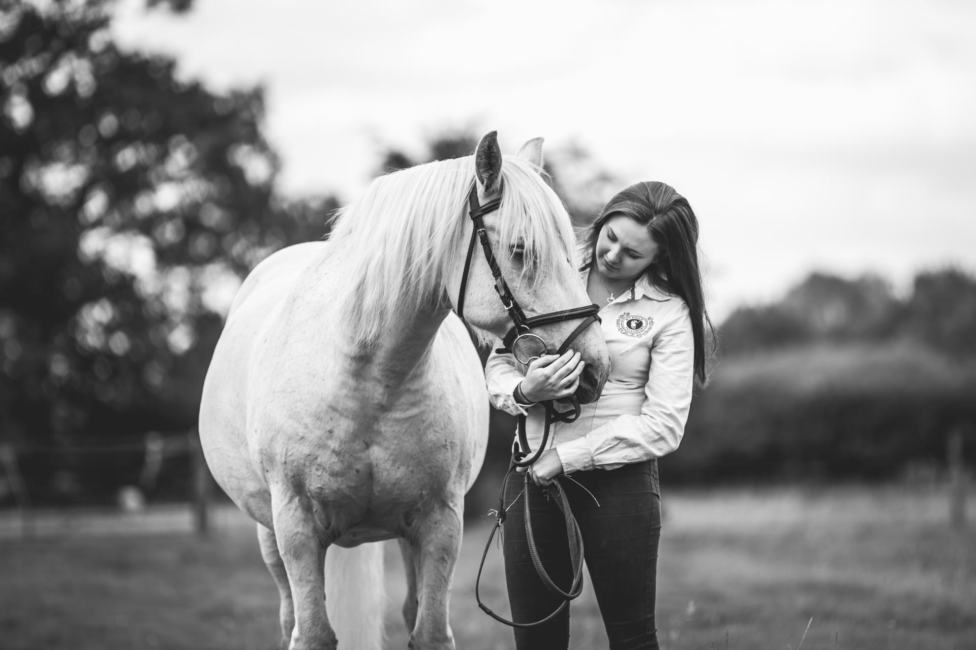 Cheshire Equine Photography