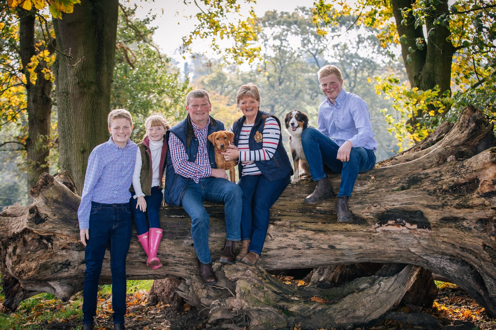 Forest family photoshoot Joanna Eardley photography
