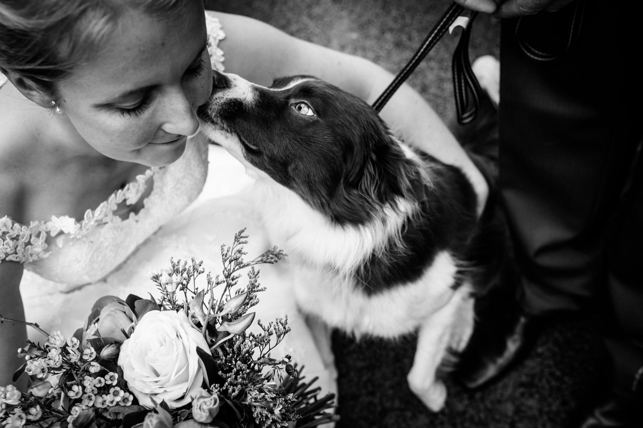 Wedding & pet photographer Joanna Eardley
